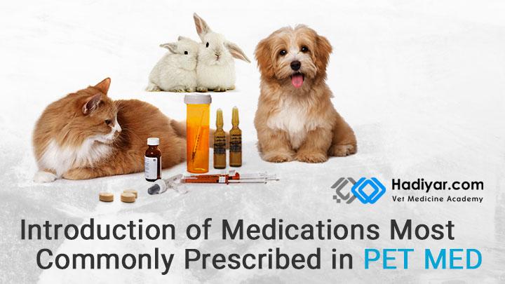 داروهای پرمصرف در طب حیوانات کوچک