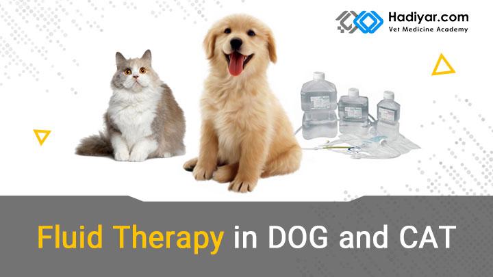 اصول و روش های مایع درمانی در سگ و گربه