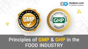 GMP و GHP در صنایع غذایی
